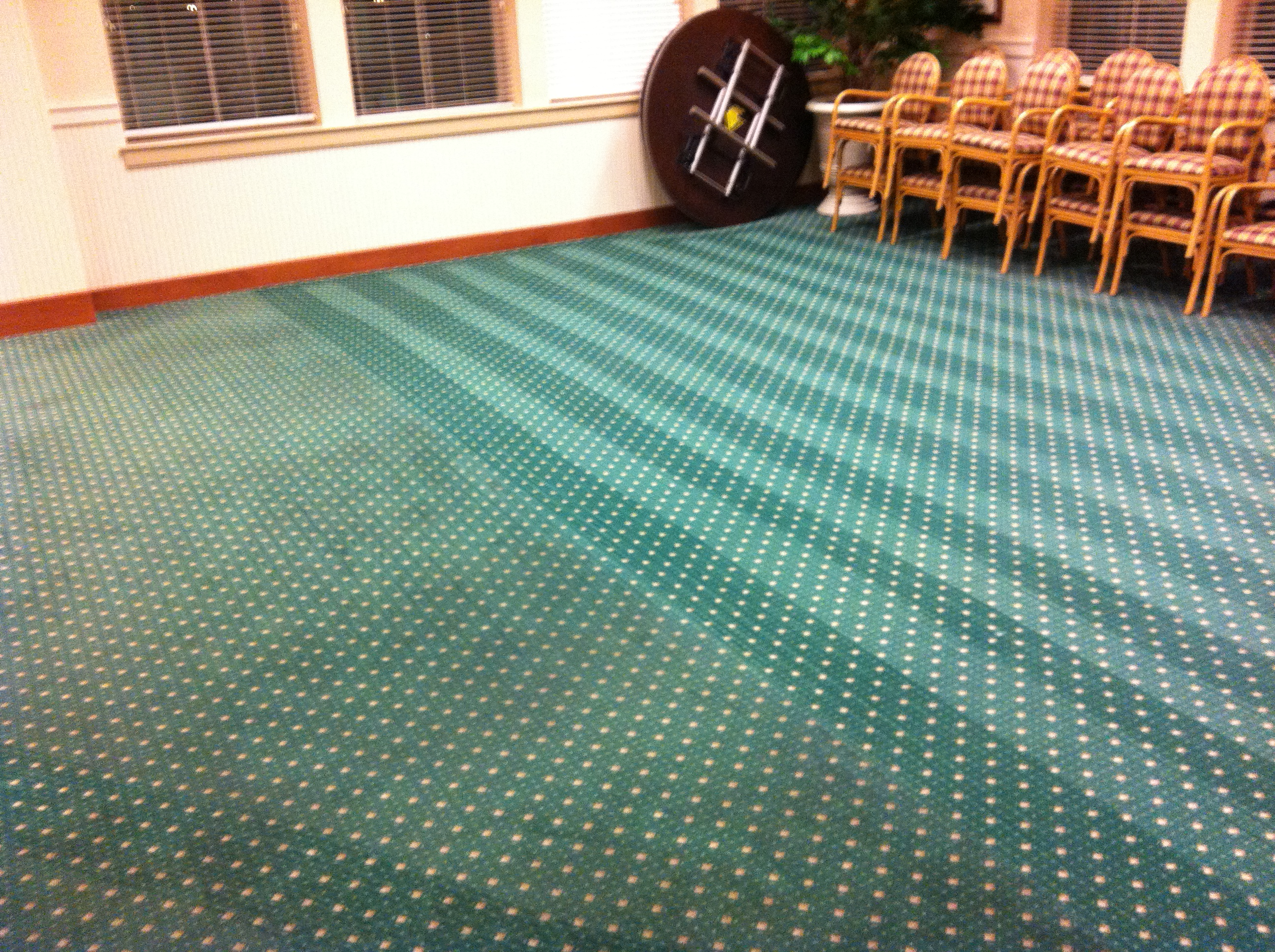 Carpet Cleaning Carpet Cleaners Dublin Chem Dry Executive