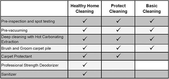 chem_dry_checklist